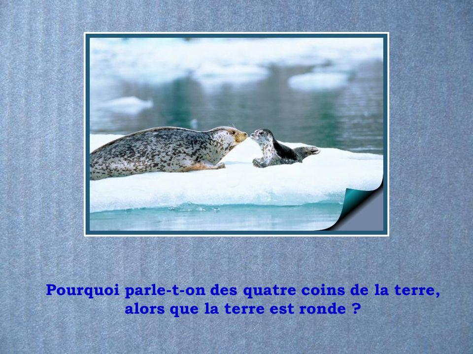 Les caprices du Français Présenté par le site Mespps.com Mespps.com
