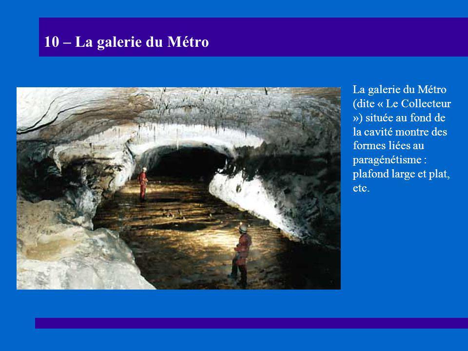 10 – La galerie du Métro La galerie du Métro (dite « Le Collecteur ») située au fond de la cavité montre des formes liées au paragénétisme : plafond l