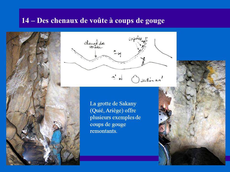 14 – Des chenaux de voûte à coups de gouge La grotte de Sakany (Quié, Ariège) offre plusieurs exemples de coups de gouge remontants.