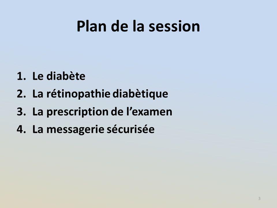 Plan de la session 1.Le diabète 2.La rétinopathie diabètique 3.La prescription de l'examen 4.La messagerie sécurisée 3