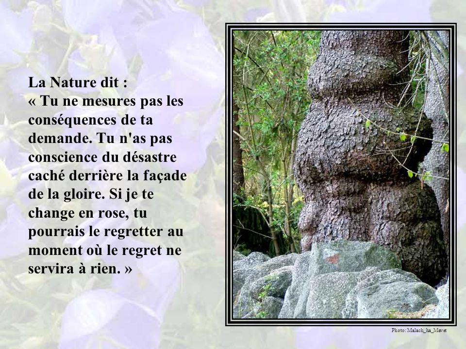 La violette répondit d une voix suppliante : « Mère Nature, vous qui êtes magnifique dans votre toute-puissance et prodigieuse dans votre affection, je vous supplie de toutes mes forces, de tout mon être, faites de moi une rose, ne fût-ce qu un jour.