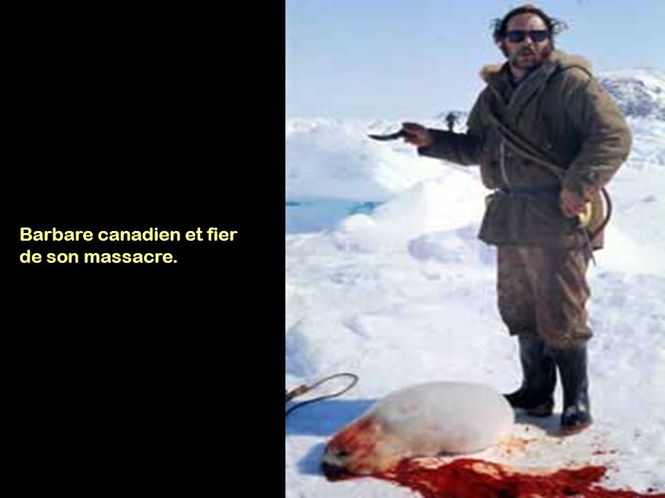 Barbare canadien et fier de son massacre.