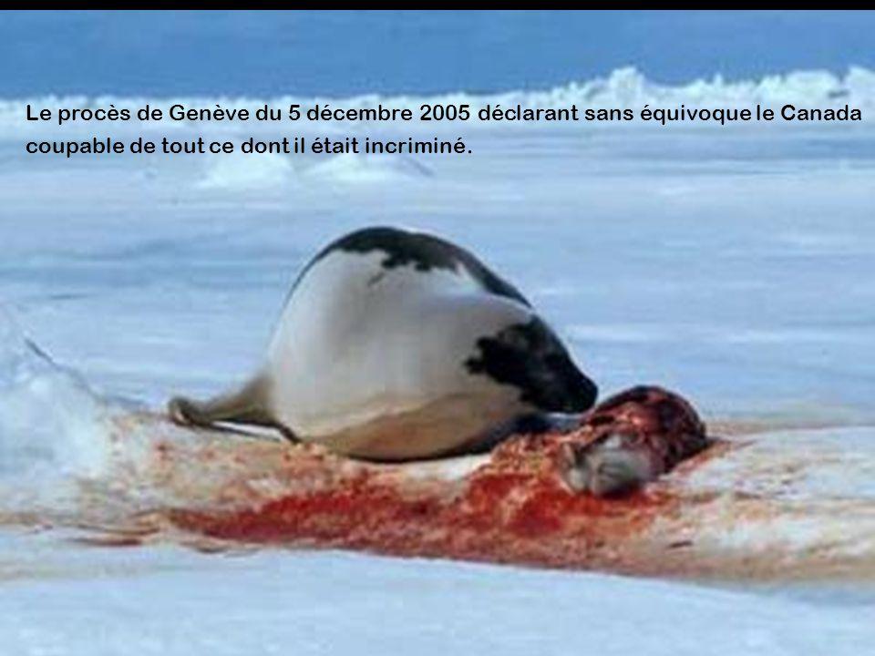 Le procès de Genève du 5 décembre 2005 déclarant sans équivoque le Canada coupable de tout ce dont il était incriminé.