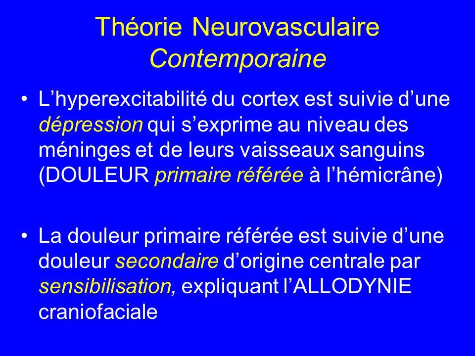 Théorie Neurovasculaire Contemporaine L'hyperexcitabilité du cortex est suivie d'une dépression qui s'exprime au niveau des méninges et de leurs vaiss