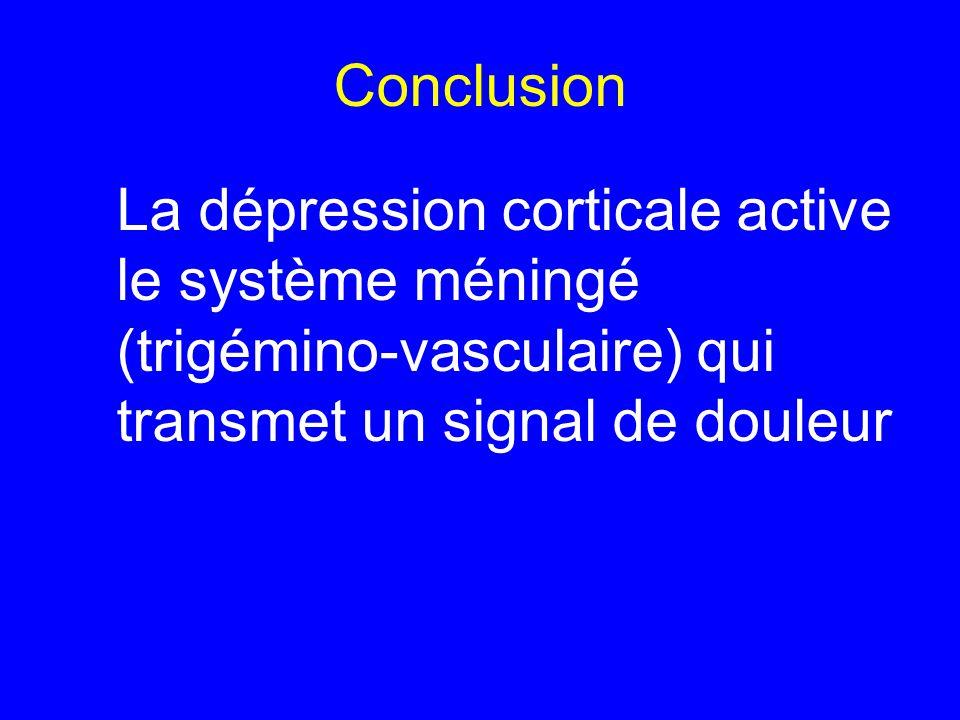 Conclusion La dépression corticale active le système méningé (trigémino-vasculaire) qui transmet un signal de douleur
