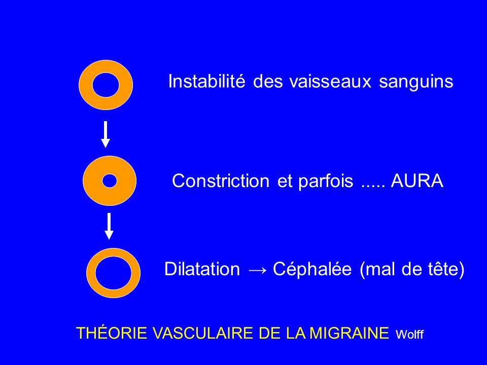 Instabilité des vaisseaux sanguins Constriction et parfois..... AURA Dilatation → Céphalée (mal de tête) THÉORIE VASCULAIRE DE LA MIGRAINE Wolff