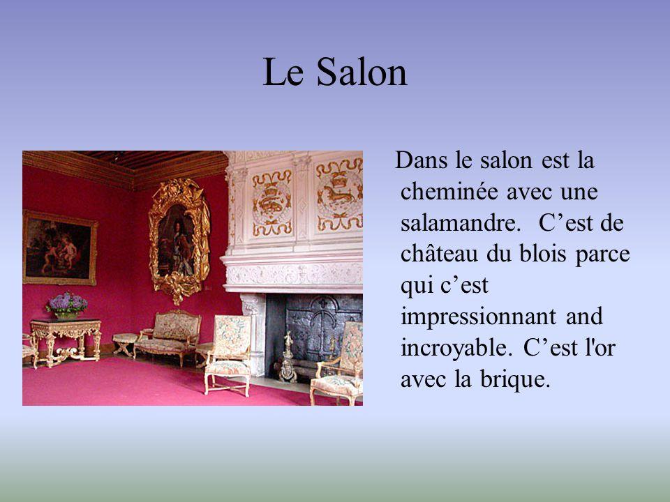 Le Salon Dans le salon est la cheminée avec une salamandre. C'est de château du blois parce qui c'est impressionnant and incroyable. C'est l'or avec l
