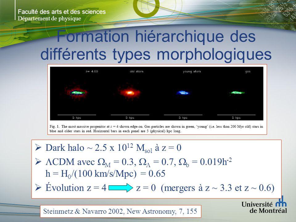 Faculté des arts et des sciences Département de physique Formation hiérarchique des différents types morphologiques  Dark halo ~ 2.5 x 10 12 M sol à z = 0   CDM avec  M = 0.3,   = 0.7,  b = 0.019h -2 h = H 0 /(100 km/s/Mpc) = 0.65  Évolution z = 4 z = 0 (mergers à z ~ 3.3 et z ~ 0.6) Steinmetz & Navarro 2002, New Astronomy, 7, 155