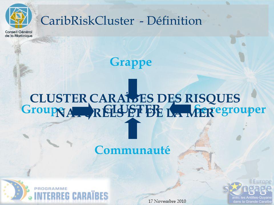 17 Novembre 2010 CaribRiskCluster - Définition CLUSTER Communauté Groupe Se regrouper Grappe CLUSTER CARAÏBES DES RISQUES NATURELS ET DE LA MER