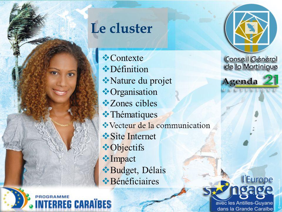 Le cluster  Contexte  Définition  Nature du projet  Organisation  Zones cibles  Thématiques  Vecteur de la communication  Site Internet  Obje