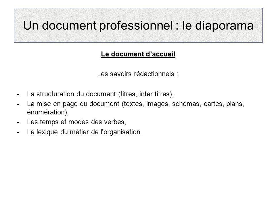 Un document professionnel : le diaporama Le document d'accueil Les savoirs rédactionnels : -La structuration du document (titres, inter titres), -La m