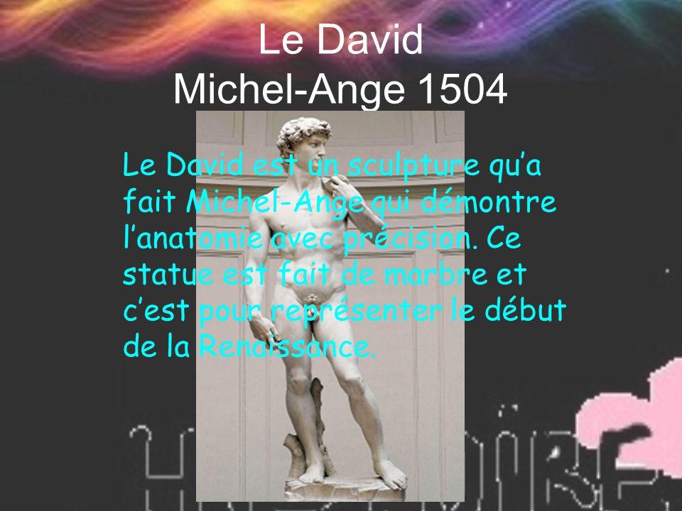 Le David Michel-Ange 1504 Le David est un sculpture qu'a fait Michel-Ange qui démontre l'anatomie avec précision. Ce statue est fait de marbre et c'es