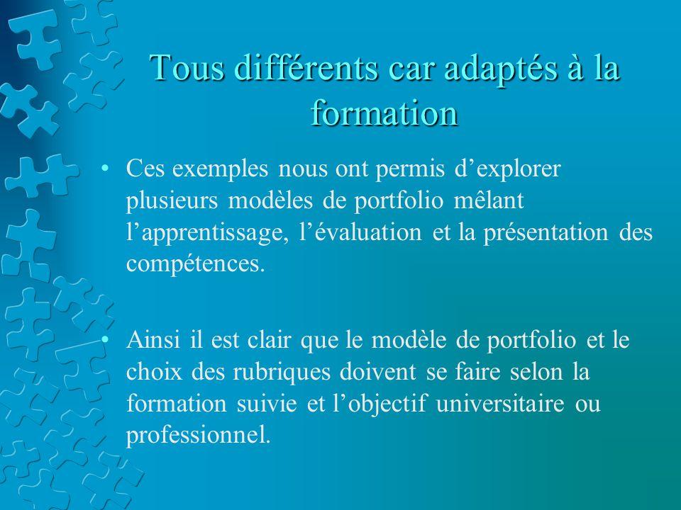 Tous différents car adaptés à la formation Ces exemples nous ont permis d'explorer plusieurs modèles de portfolio mêlant l'apprentissage, l'évaluation