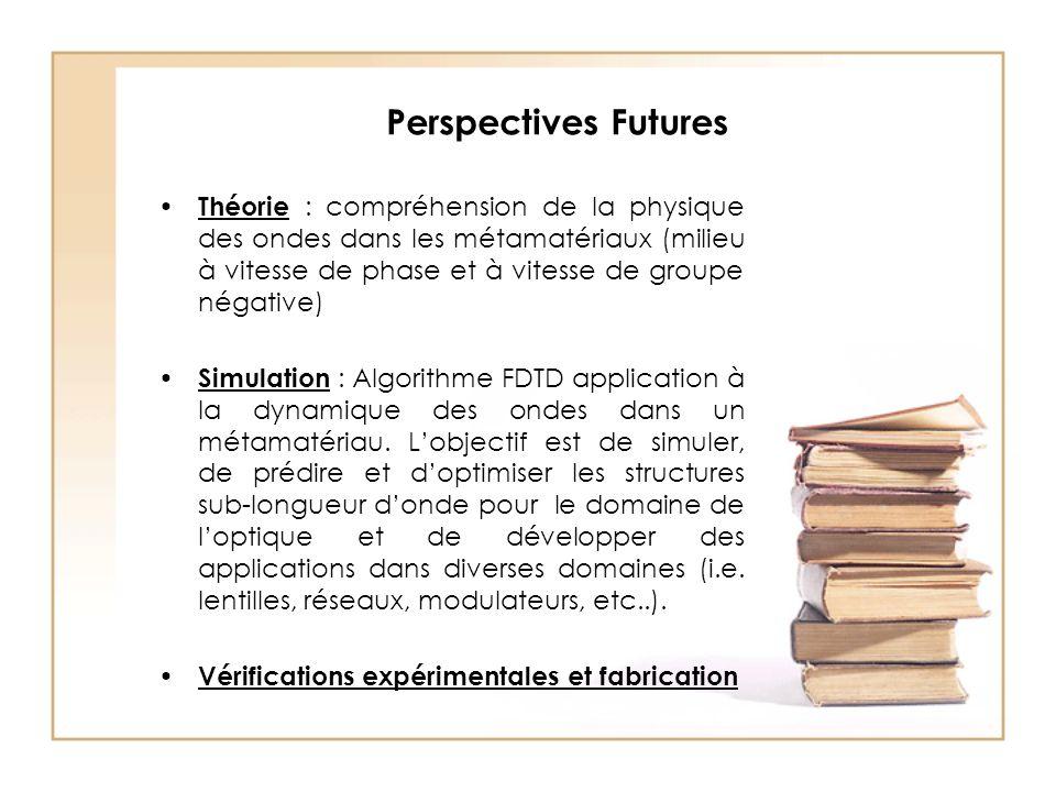 Perspectives Futures Théorie : compréhension de la physique des ondes dans les métamatériaux (milieu à vitesse de phase et à vitesse de groupe négative) Simulation : Algorithme FDTD application à la dynamique des ondes dans un métamatériau.