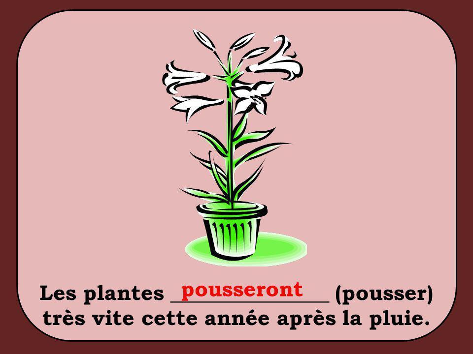 Les plantes _______________ (pousser) très vite cette année après la pluie. pousseront