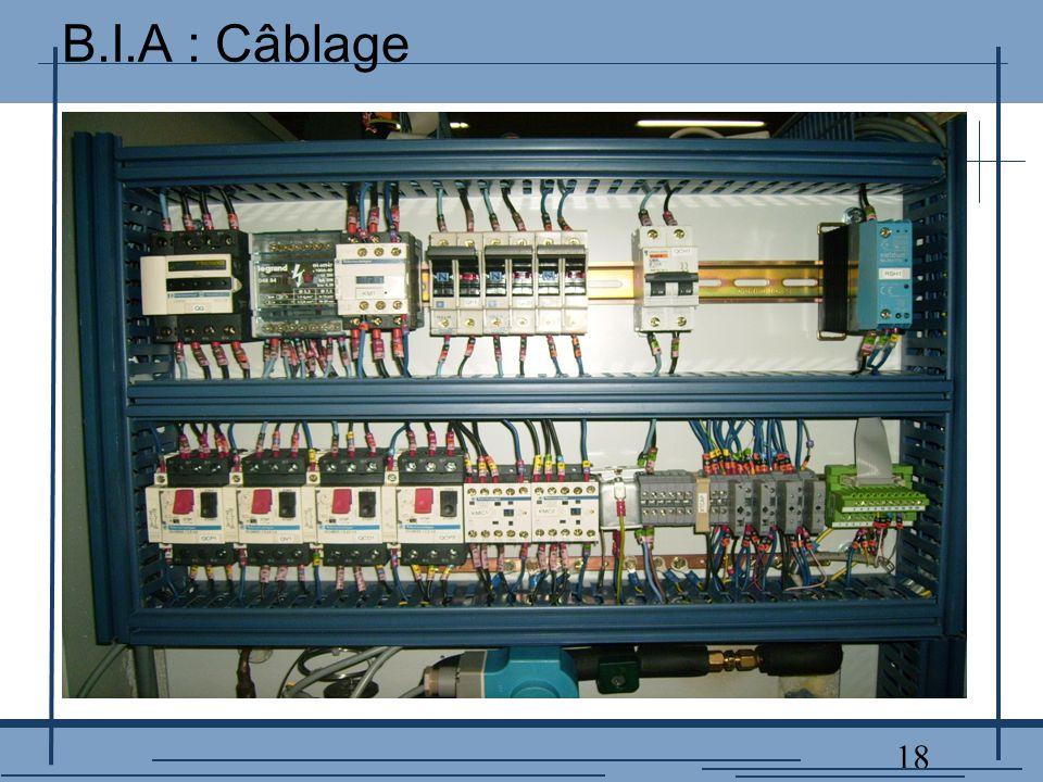 18 B.I.A : Câblage