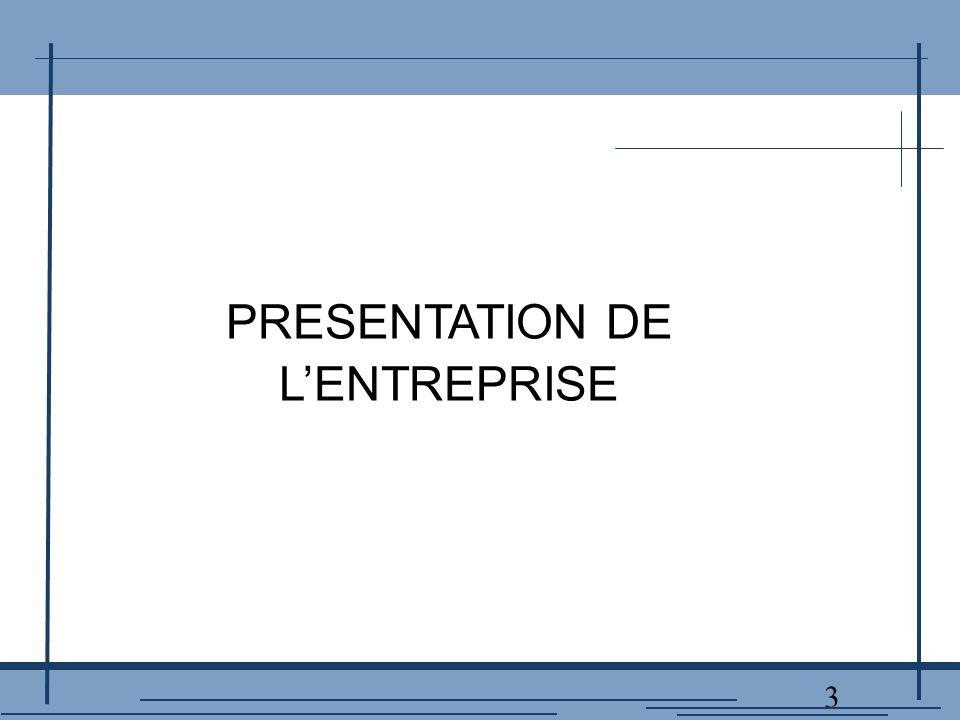 3 PRESENTATION DE L'ENTREPRISE
