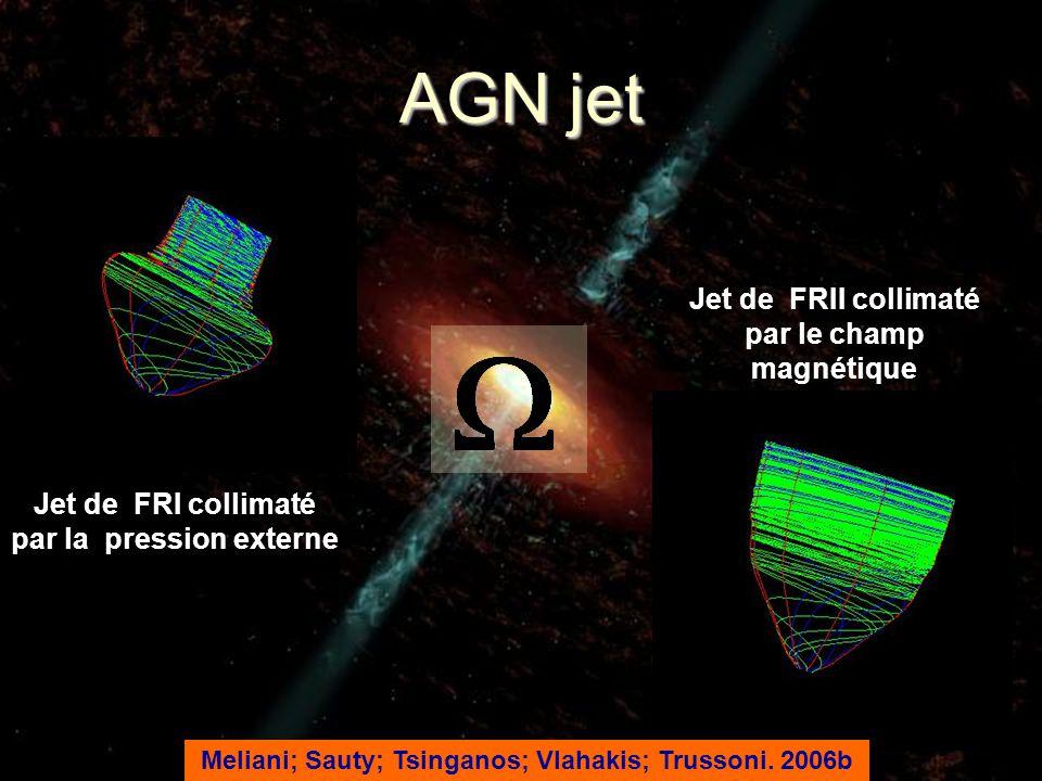 AGN jet Jet de FRII collimaté par le champ magnétique Jet de FRI collimaté par la pression externe Meliani; Sauty; Tsinganos; Vlahakis; Trussoni. 2006