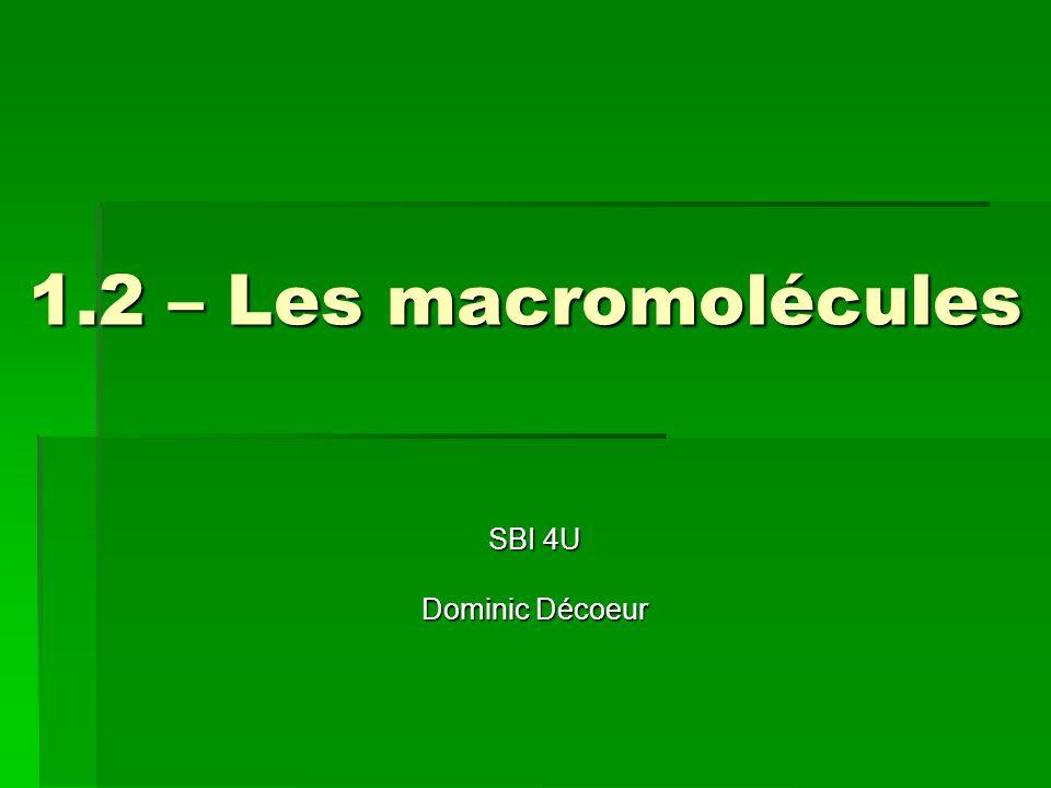 1.2 – Les macromolécules SBI 4U Dominic Décoeur