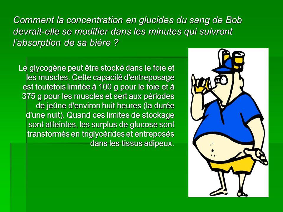 Comment la concentration en glucides du sang de Bob devrait-elle se modifier dans les minutes qui suivront l'absorption de sa bière ? Le glycogène peu