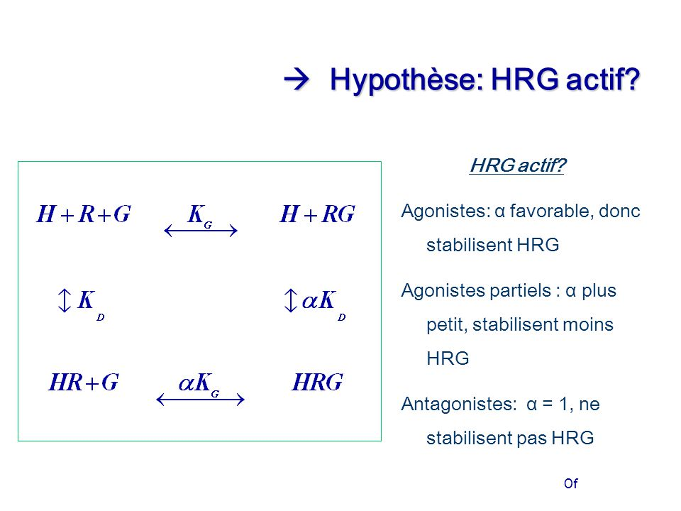 Of  Hypothèse: HRG actif? HRG actif? Agonistes: α favorable, donc stabilisent HRG Agonistes partiels : α plus petit, stabilisent moins HRG Antagonist