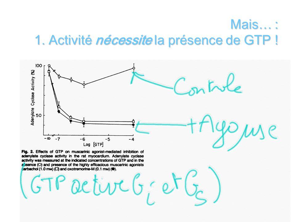 Of Mais… : 1. Activité nécessite la présence de GTP !