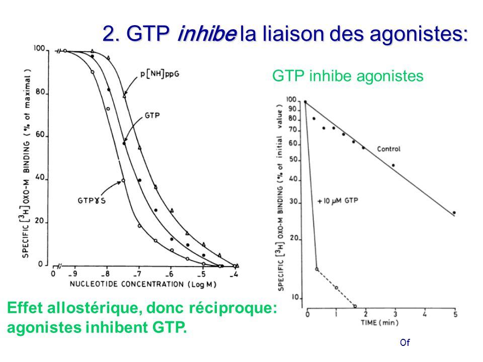 Of Effet allostérique, donc réciproque: agonistes inhibent GTP.