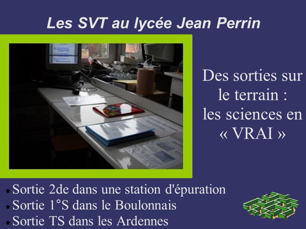 Les SVT au lycée Jean Perrin Sortie 2de dans une station d'épuration Sortie 1°S dans le Boulonnais Sortie TS dans les Ardennes Des sorties sur le terr
