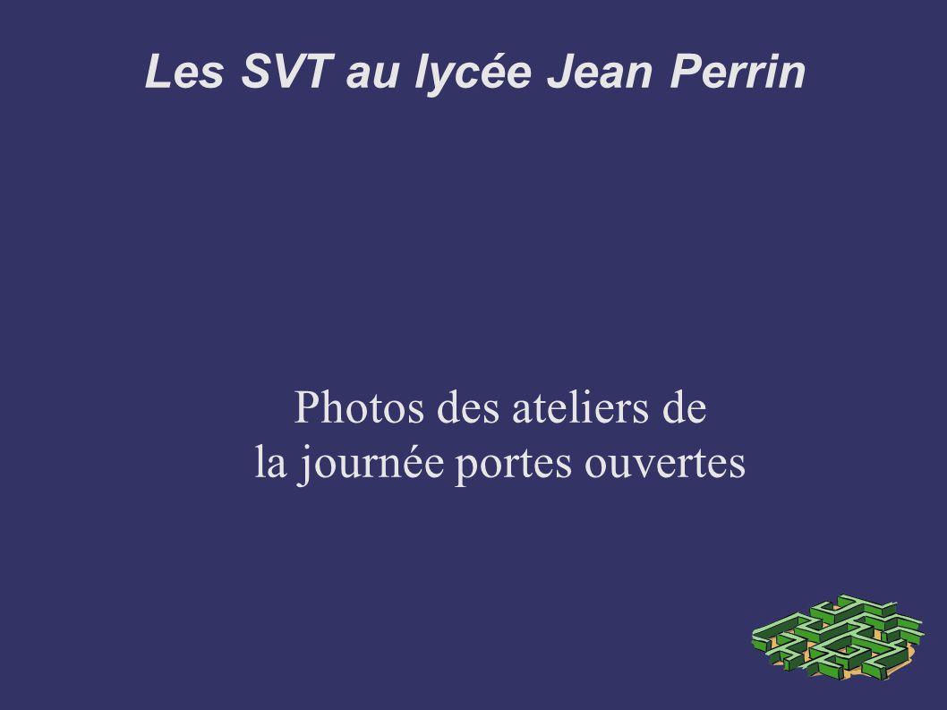 Les SVT au lycée Jean Perrin Proposer des supports d activités variés pour assurer la réussite des élèves