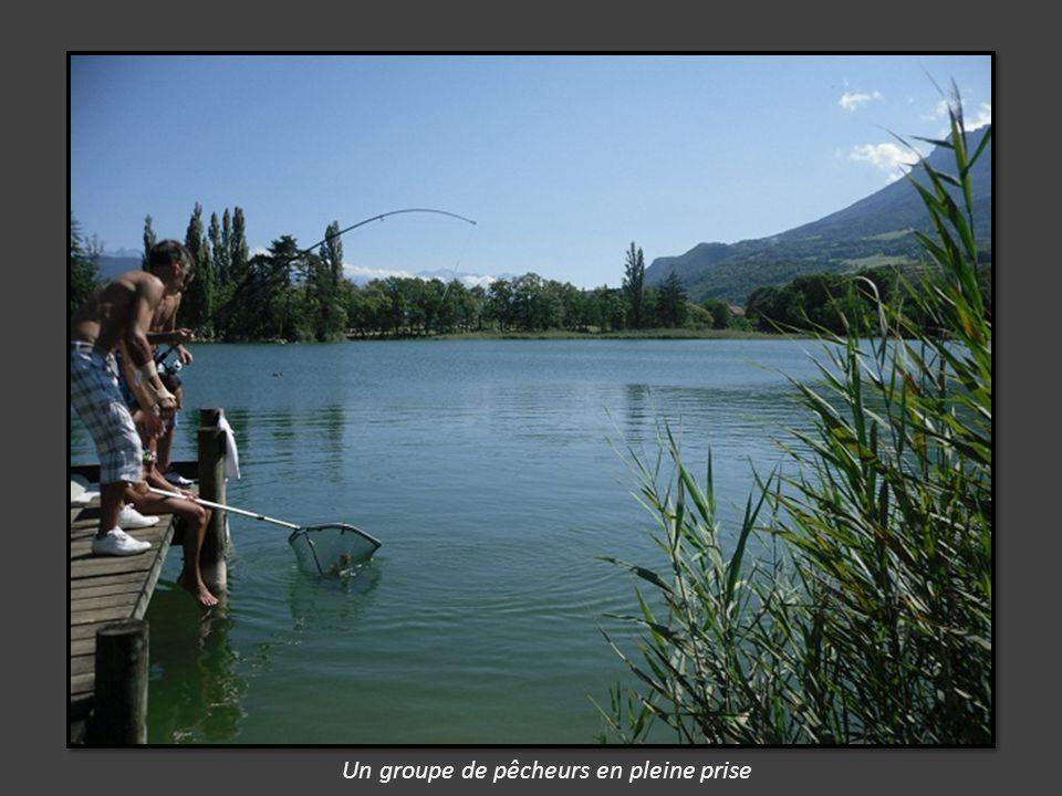 des pontons sont aménagés pour la pêche.