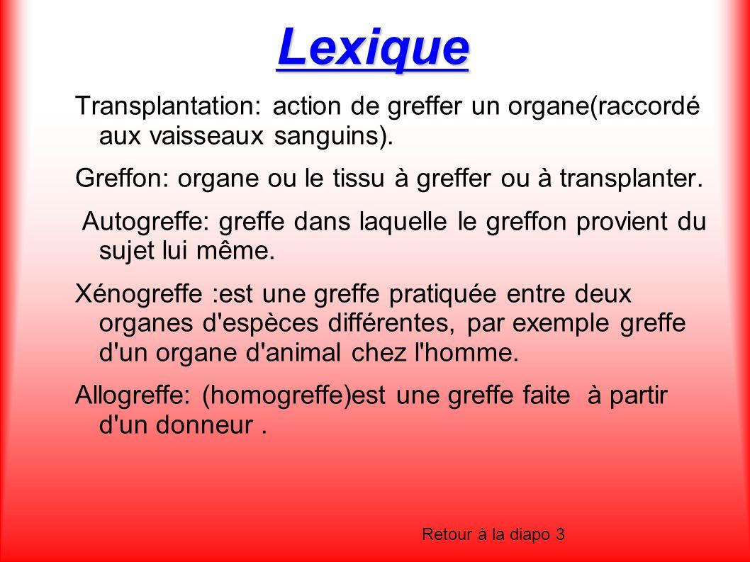 Lexique Transplantation: action de greffer un organe(raccordé aux vaisseaux sanguins). Greffon: organe ou le tissu à greffer ou à transplanter. Autogr