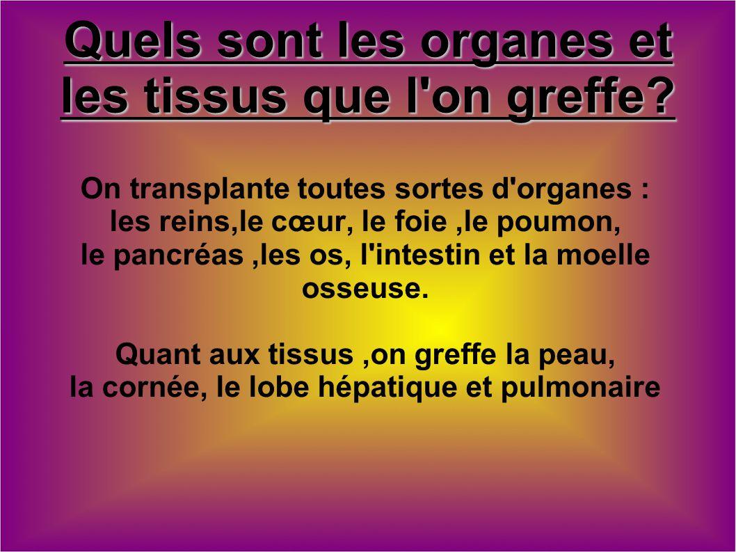 Quels sont les organes et les tissus que l'on greffe? On transplante toutes sortes d'organes : les reins,le cœur, le foie,le poumon, le pancréas,les o