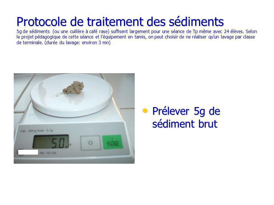 Protocole de traitement des sédiments 5g de sédiments (ou une cuillère à café rase) suffisent largement pour une séance de Tp même avec 24 élèves.