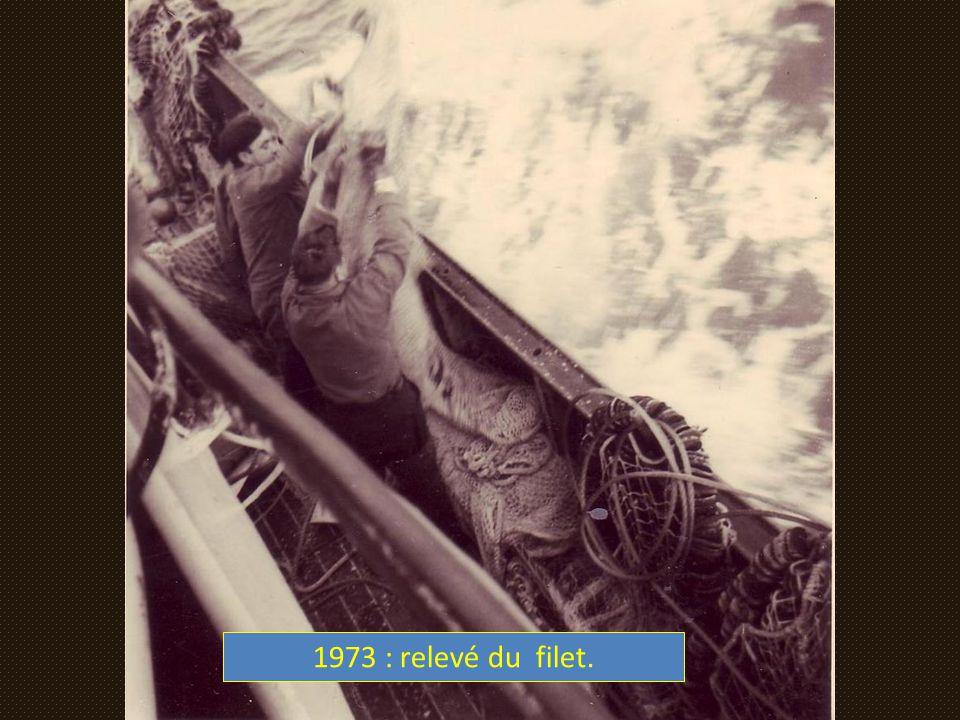 1973 : relevé du filet.