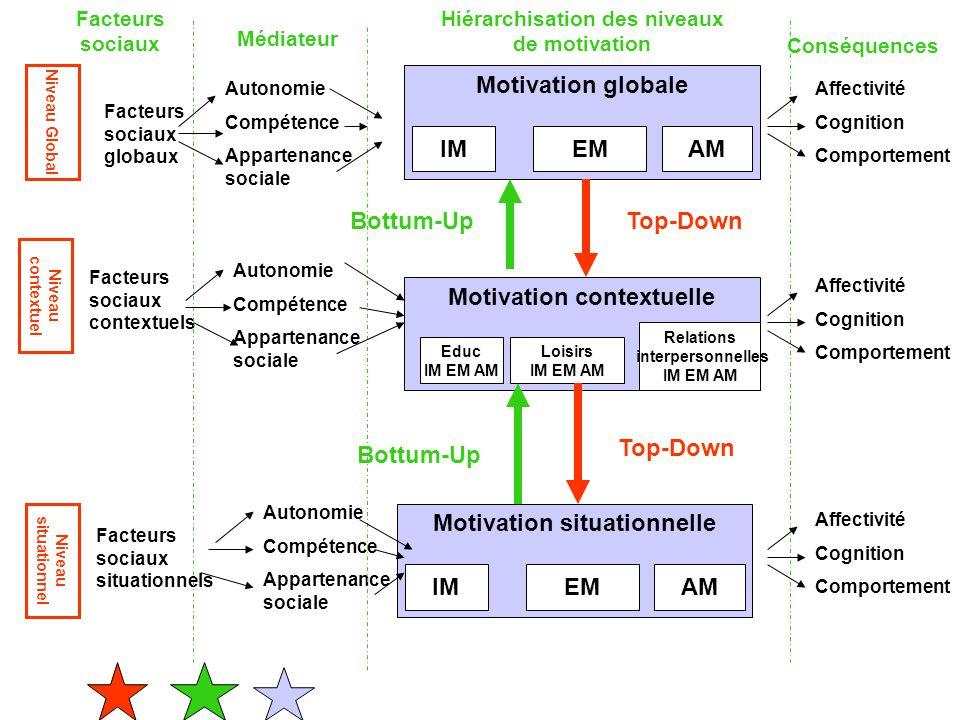 Niveau Global Niveau contextuel Niveau situationnel Facteurs sociaux Conséquences Hiérarchisation des niveaux de motivation Médiateur Affectivité Cogn