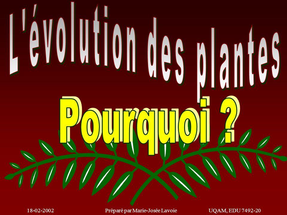 18-02-2002Préparé par Marie-Josée LavoieUQAM, EDU 7492-20