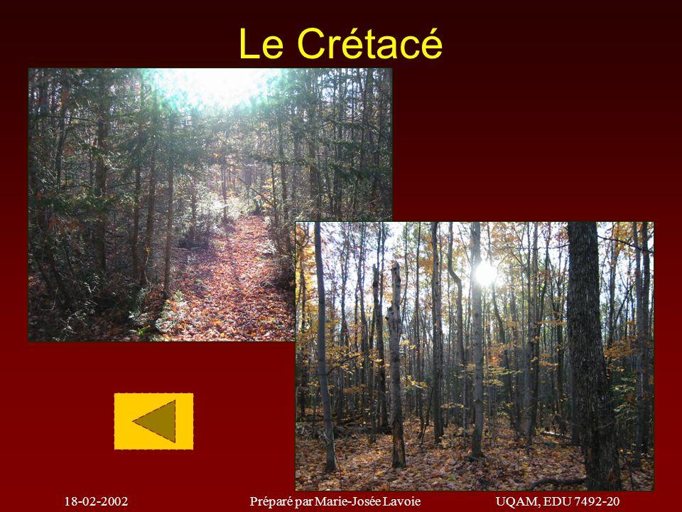 18-02-2002Préparé par Marie-Josée LavoieUQAM, EDU 7492-20 Le Permien