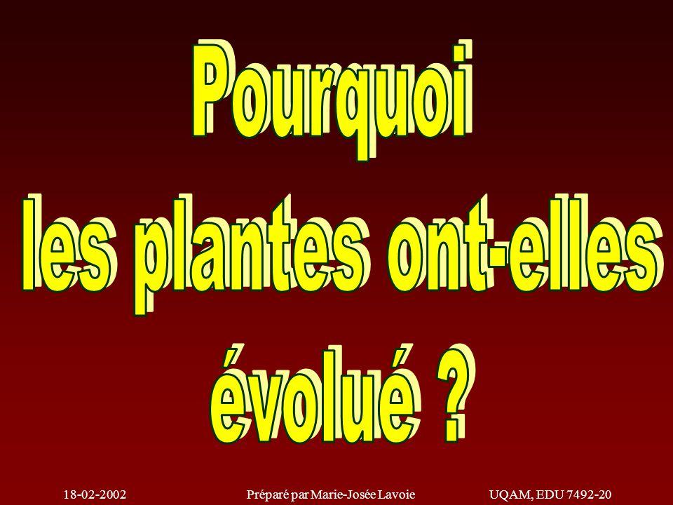 18-02-2002Préparé par Marie-Josée LavoieUQAM, EDU 7492-20 Mycophytes (Champignons) Ptéridophytes (Fougères) Bryophytes (Mousses) Phycophytes (Algues) Le Règne végétal Plantes primitives (Images) Plantes supérieures (Images) Gymnospermes (conifères) Angiospermes (plantes à fleurs)