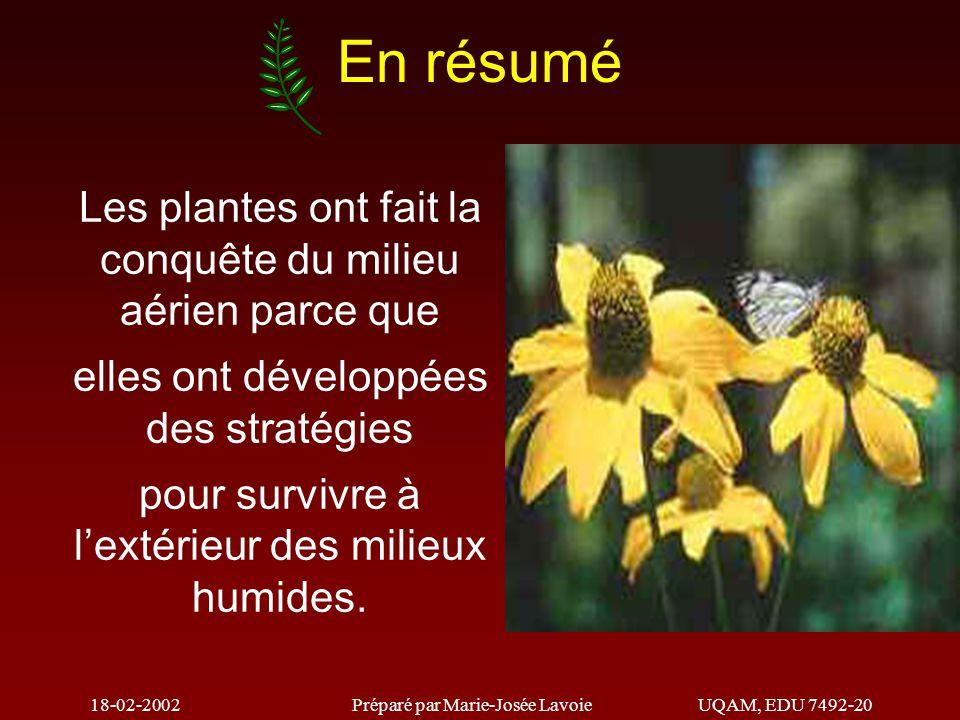 18-02-2002Préparé par Marie-Josée LavoieUQAM, EDU 7492-20 En résumé Les plantes ont fait la conquête du milieu aérien parce que elles ont développées des stratégies pour survivre à l'extérieur des milieux humides.