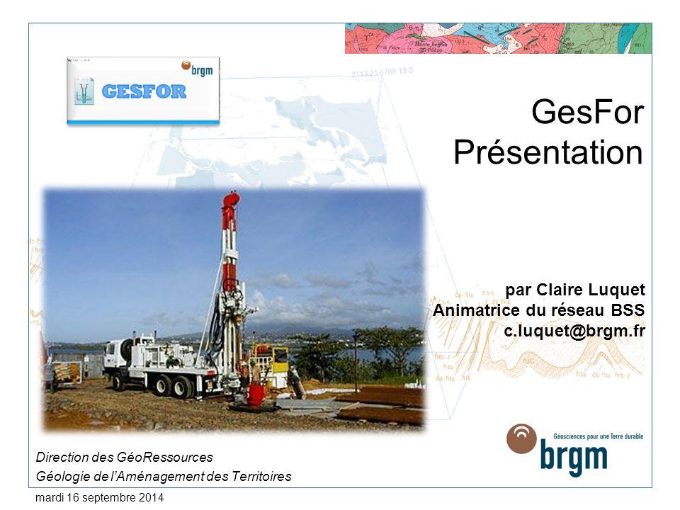 GesFor Présentation Direction des GéoRessources Géologie de l'Aménagement des Territoires mardi 16 septembre 2014 par Claire Luquet Animatrice du rése