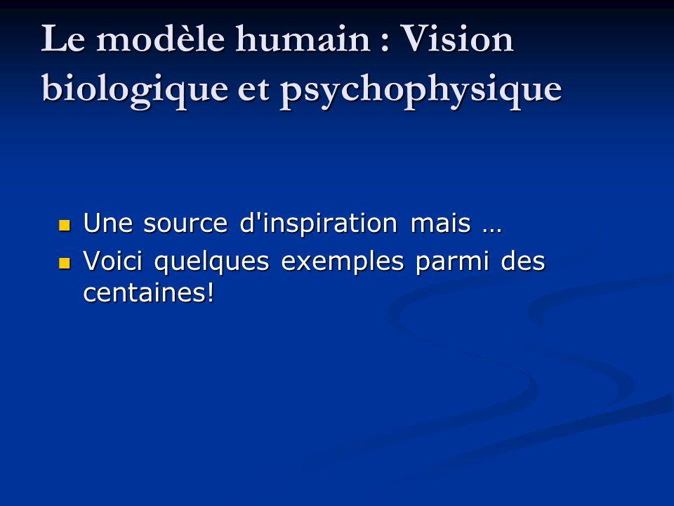 Le modèle humain : Vision biologique et psychophysique Une source d'inspiration mais … Une source d'inspiration mais … Voici quelques exemples parmi d