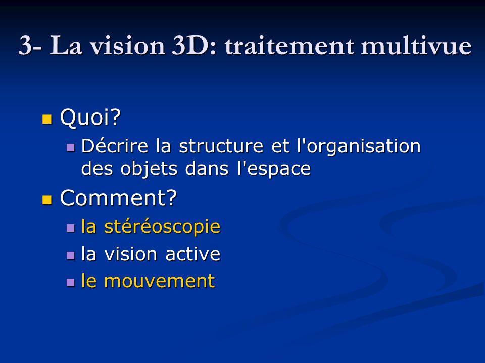 3- La vision 3D: traitement multivue Quoi? Quoi? Décrire la structure et l'organisation des objets dans l'espace Décrire la structure et l'organisatio