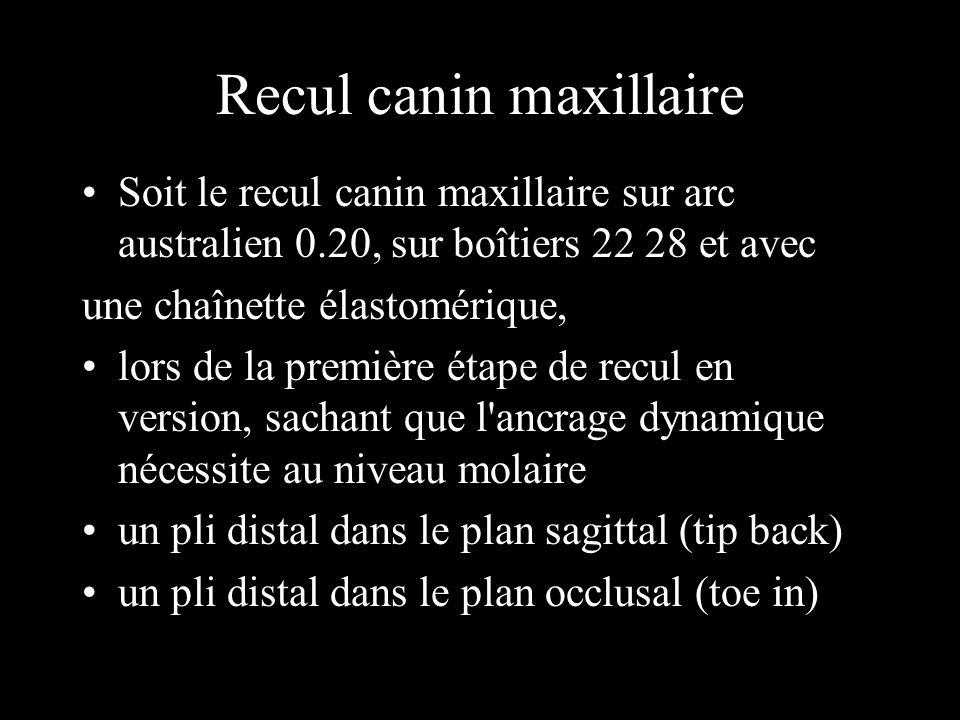 Schéma n°5 résultante et moment résultant au niveau des centres de résistance de la molaire et de la canine.