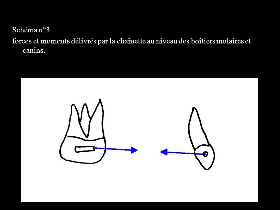 4 éléments Schéma n°4 forces et moments délivrés par la chaînette au niveau des centres de résistance de la molaire et de la canine.