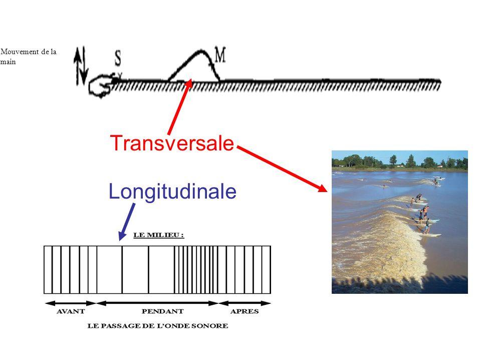 Transversale Longitudinale Figure 1 Mouvement de la main