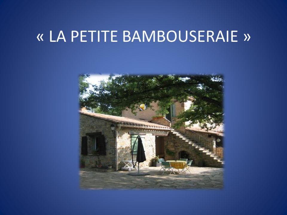 « LA PETITE BAMBOUSERAIE »