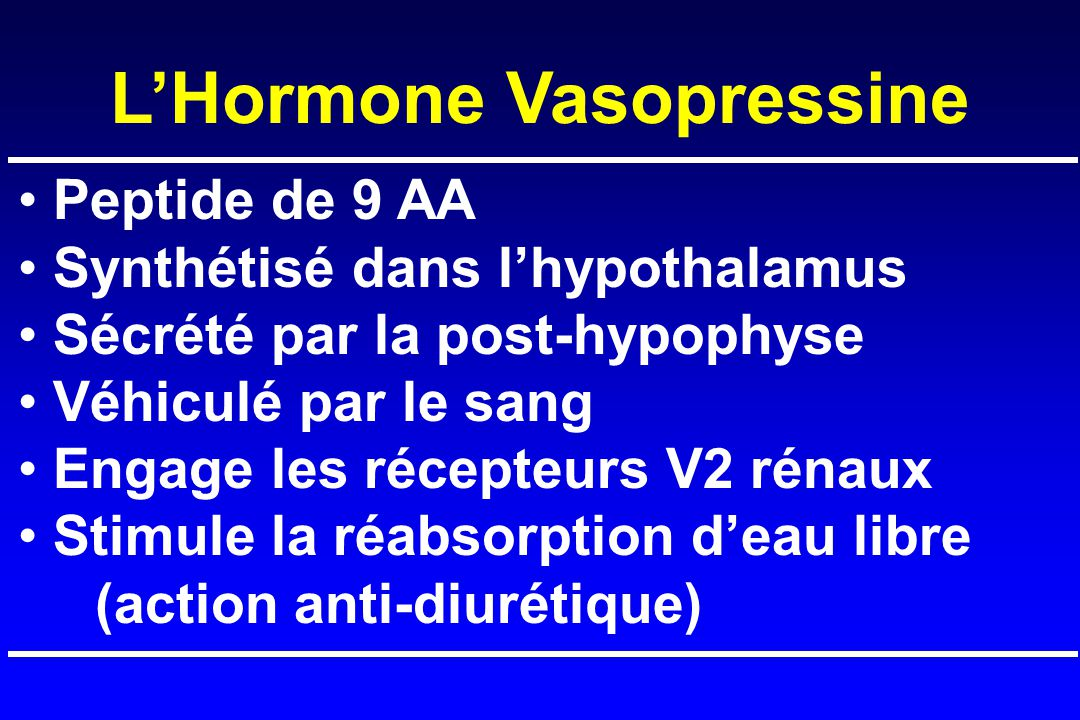 Peptide de 9 AA Synthétisé dans l'hypothalamus Sécrété par la post-hypophyse Véhiculé par le sang Engage les récepteurs V2 rénaux Stimule la réabsorption d'eau libre (action anti-diurétique) L'Hormone Vasopressine
