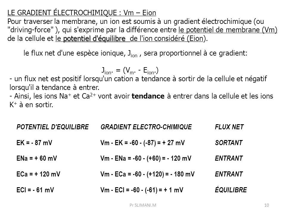 POTENTIEL D'EQUILIBREGRADIENT ELECTRO-CHIMIQUEFLUX NET EK = - 87 mVVm - EK = -60 - (-87) = + 27 mV SORTANT ENa = + 60 mVVm - ENa = -60 - (+60) = - 120