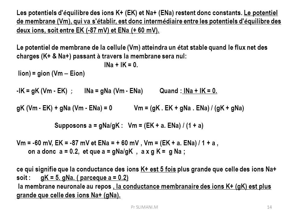 14 Les potentiels d' é quilibre des ions K+ (EK) et Na+ (ENa) restent donc constants. Le potentiel de membrane (Vm), qui va s' é tablir, est donc inte
