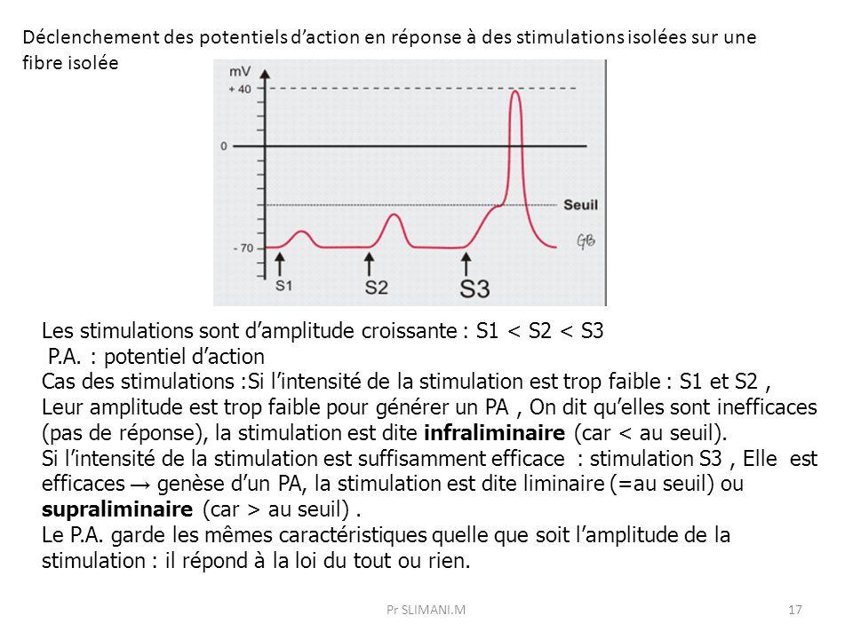 Pr SLIMANI.M17 Déclenchement des potentiels d'action en réponse à des stimulations isolées sur une fibre isolée Les stimulations sont d'amplitude croi